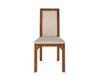 Jídelní židle ALEVIL TX040