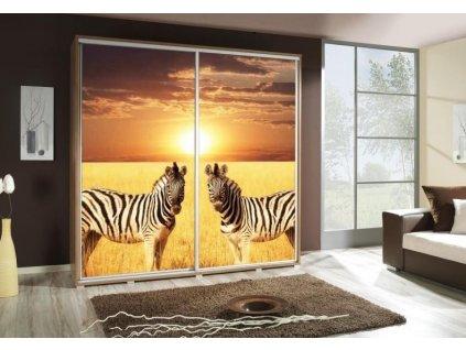 PENELOPA 205 zebry 2