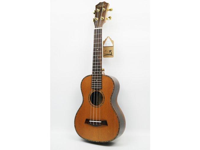 EBE 23 koncert cedr/palisandr polomasivní ukulele mechaniky barva zlatá