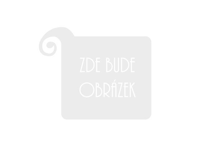 AUGUSTINIUM LEONARDO LV 2044 SET housle 4/4, ebenová garnitura, smyčec, pouzdro typ maestro