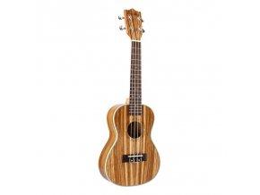 HNB Zebra C23 ukulele Concert