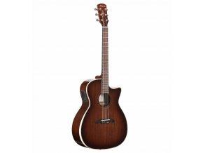 ALVAREZ AGW77CEAR - west kytara, polomasiv-ořech, L.R.BAGGS