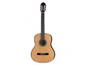 ANDY STONEWOOD AS-C20 lesk  NT klasická kytara 3/4