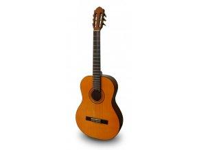 ASHTON CG 80 NT Klasická kytara 4/4