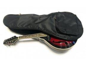 ZČ Povlak na mandolínu