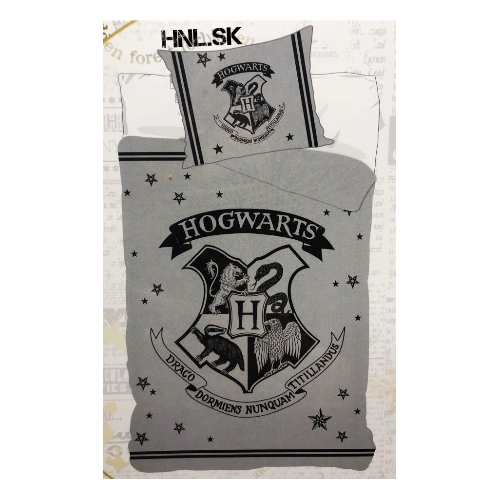 49 Harry Potter Hogwarts