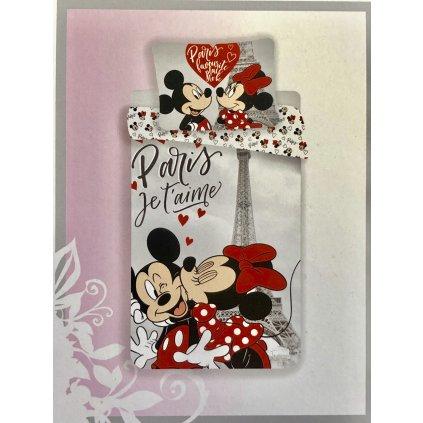 31 Paris Mickey a Minnie