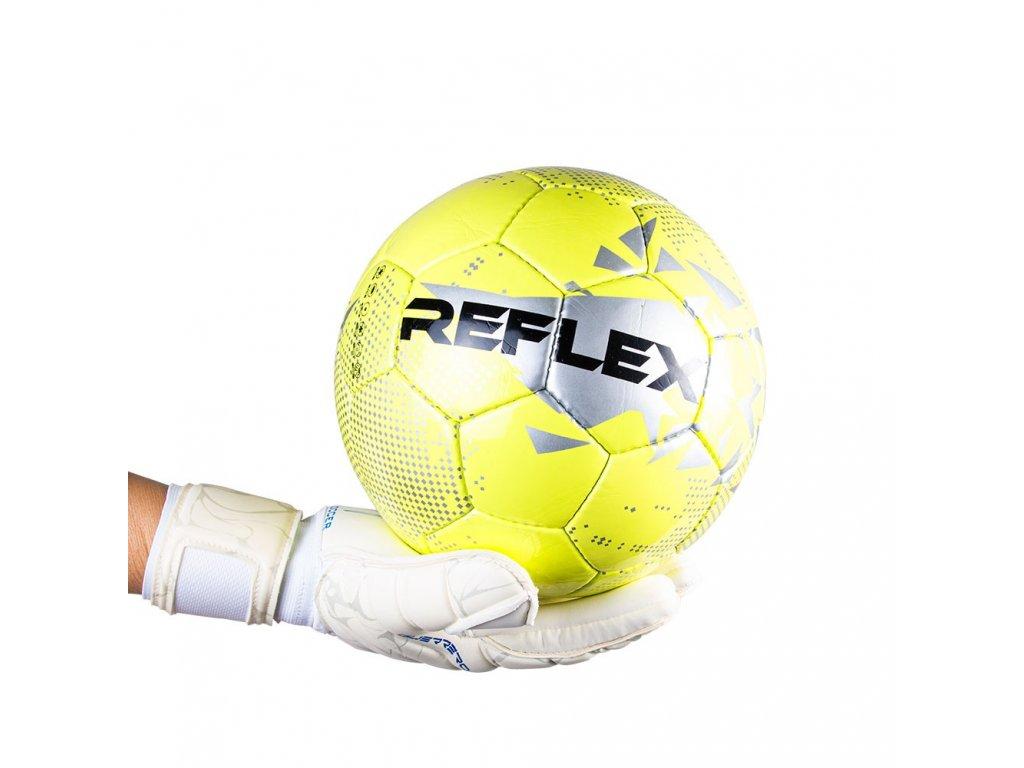 refelx 2020 (2)