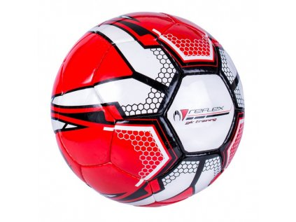17 training ball goalkeeper reflex