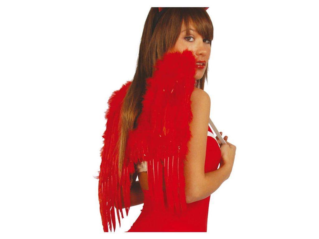 Křídla červená se svatozáří 53 x 60 cm