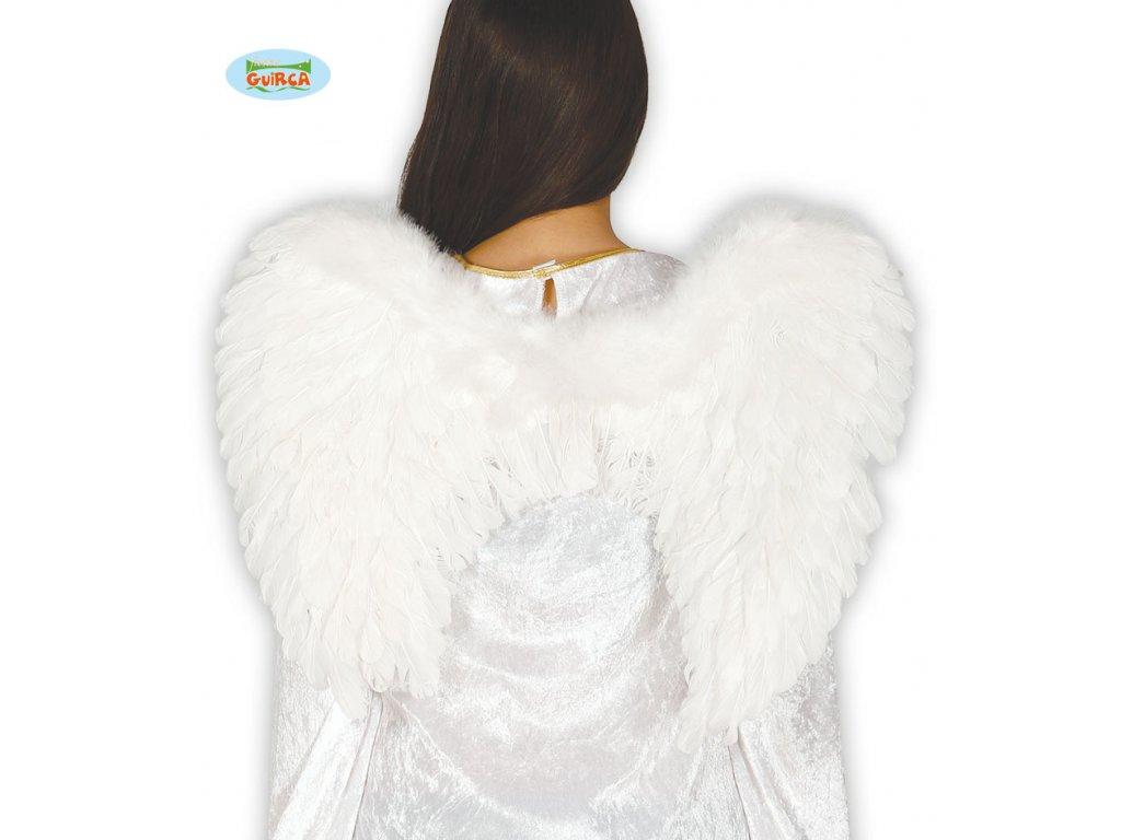 Andělská křídla 50x45 cm