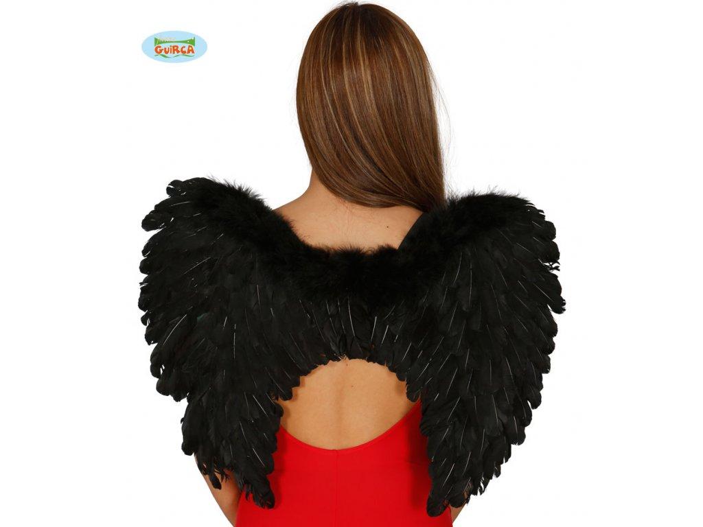 Péřová křídla černá x