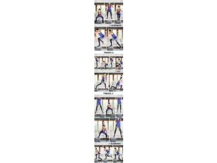 Step podložka LivePro MINI-STEP 40x10 cm