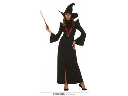 Profesorka Mcgonagallová čarodějka Harry Potter kostým pro dospělé