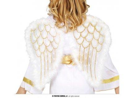 Andělská křídla 47x40 cm