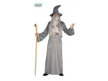 Gandalf kouzelník Harry Potter