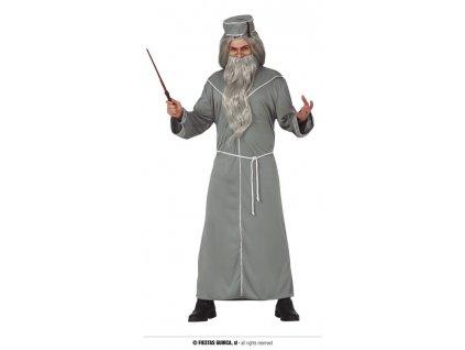 Mistr magie Gandalf kouzelník Harry Potter
