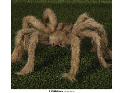Chlupatý pavouk 60 cm