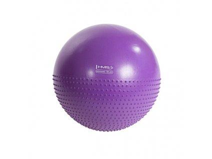Masážní gymnastický míč HMS YB03 55 cm, fialový