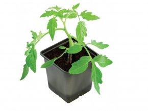 Květináč z BioPlastu hranatý 5 ks průměr 9x9 cm