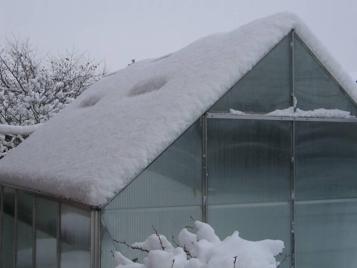 skleník_v_zimě