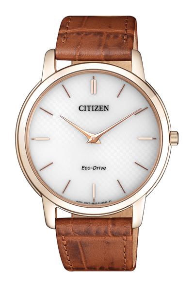 Pánské hodinky Citizen