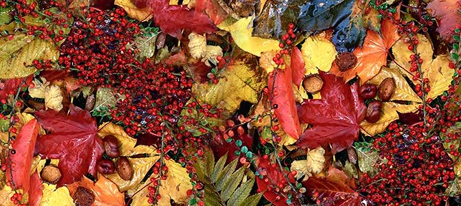Podzim je tady