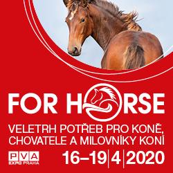Duben 2020 - FOR HORSE, Praha