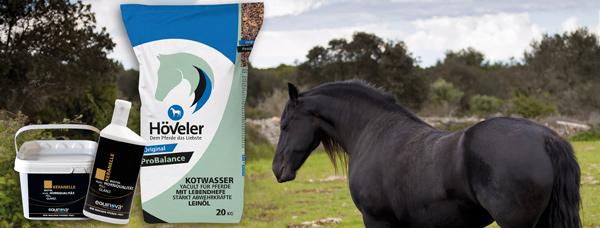 Línání a změna srsti u koní