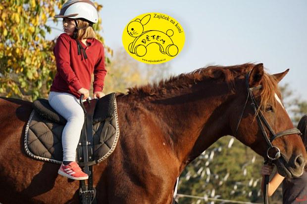 Zajíček na koni