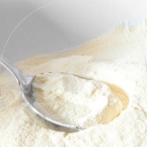 Mléko a krmení pro hříbata