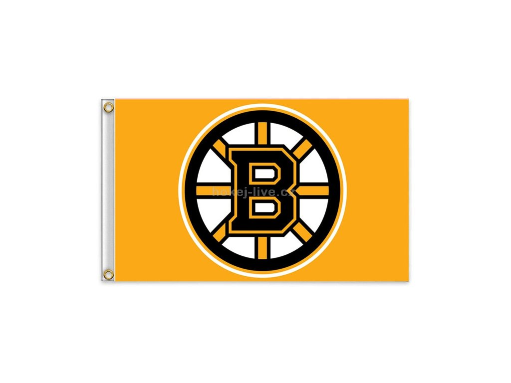 NHL vlajka Tampa Boston Bruins