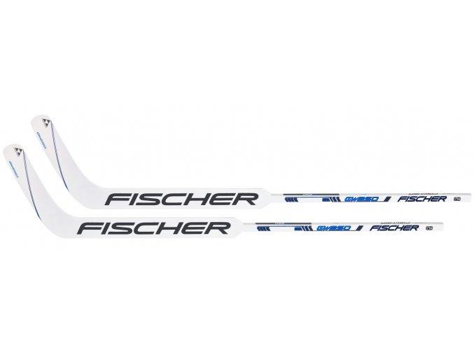 fischer goalie stick gw 250 s20 2ks