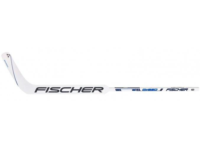 fischer goalie stick gw 250 s20 1