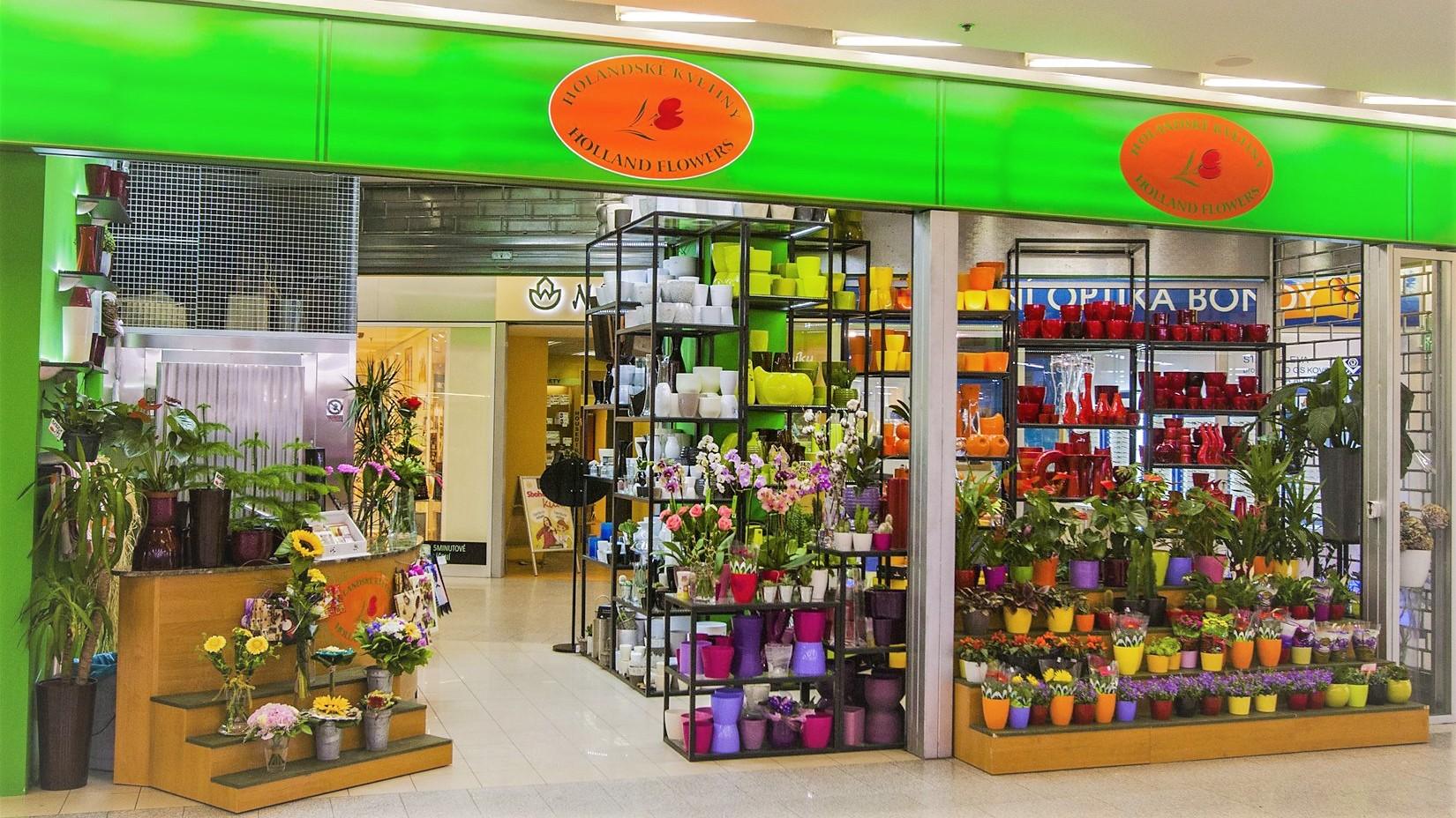 Holandské květiny Bondy centrum