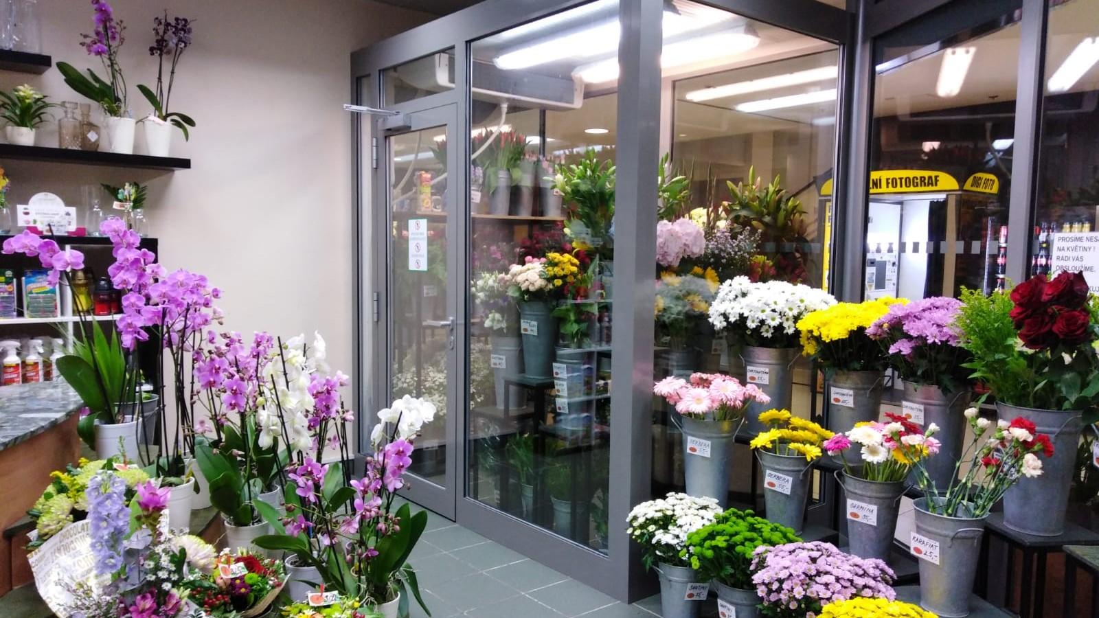 Holandské květiny Dornych Brno