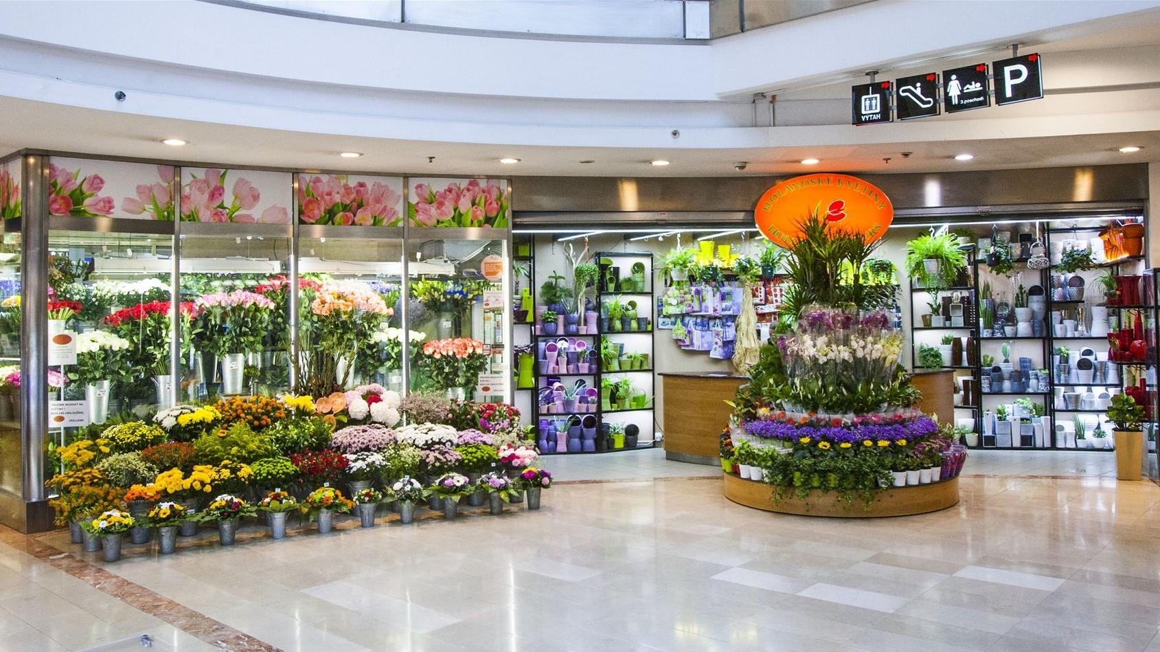 Holandské květiny Atrium Flora