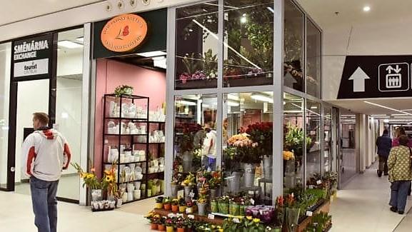 Holandské květiny Central Jablonec