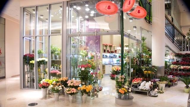 Holandské květiny OD Palladium