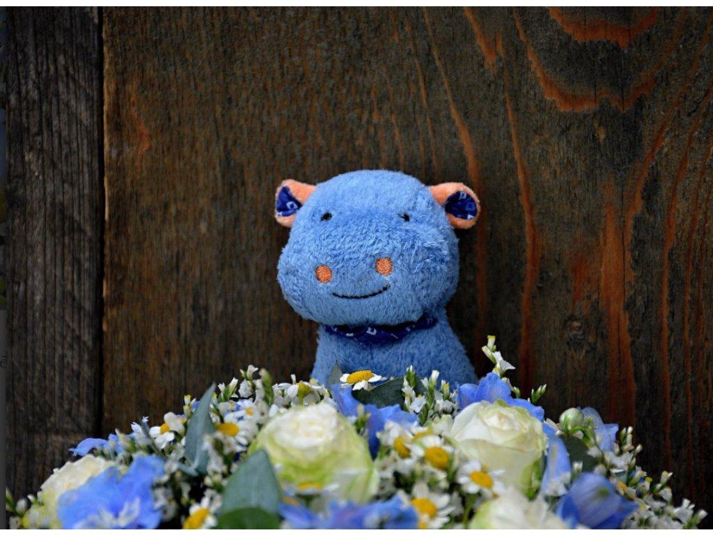 Flower box Baby boy - Holandské květiny