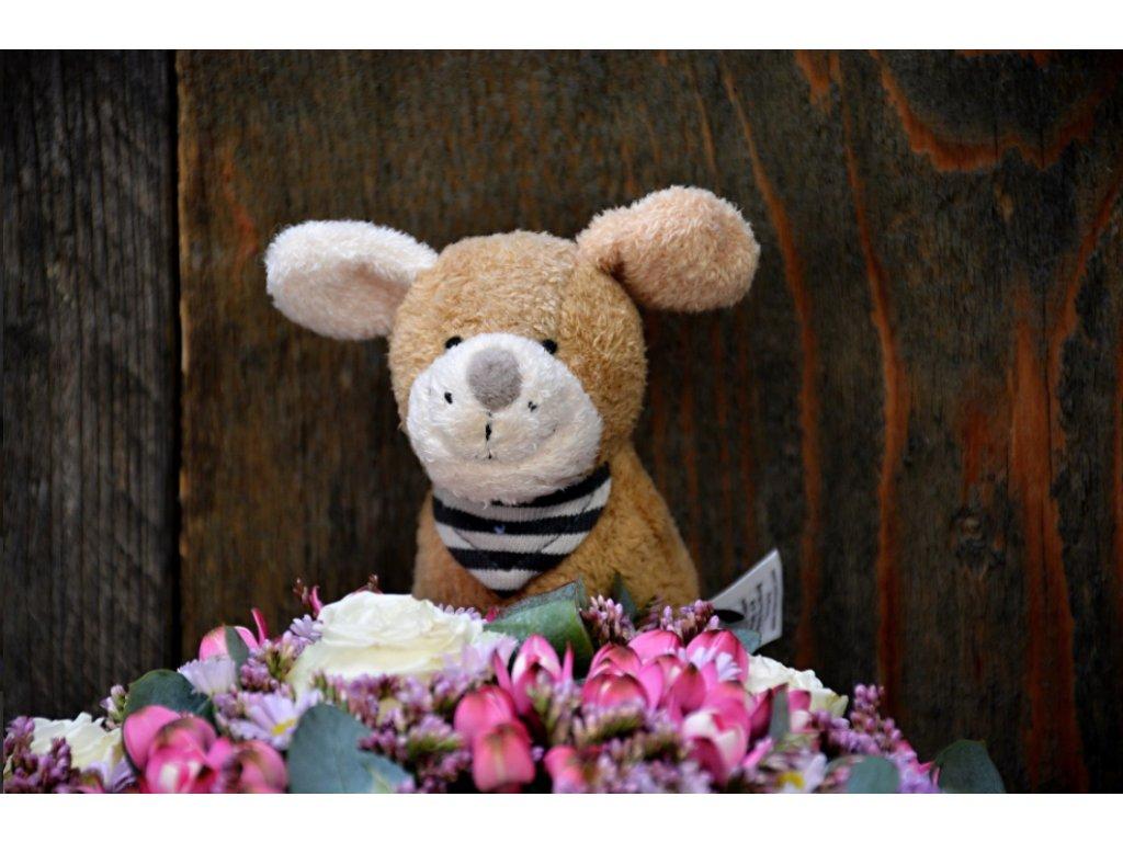 Flower box Baby girl - Holandské květiny