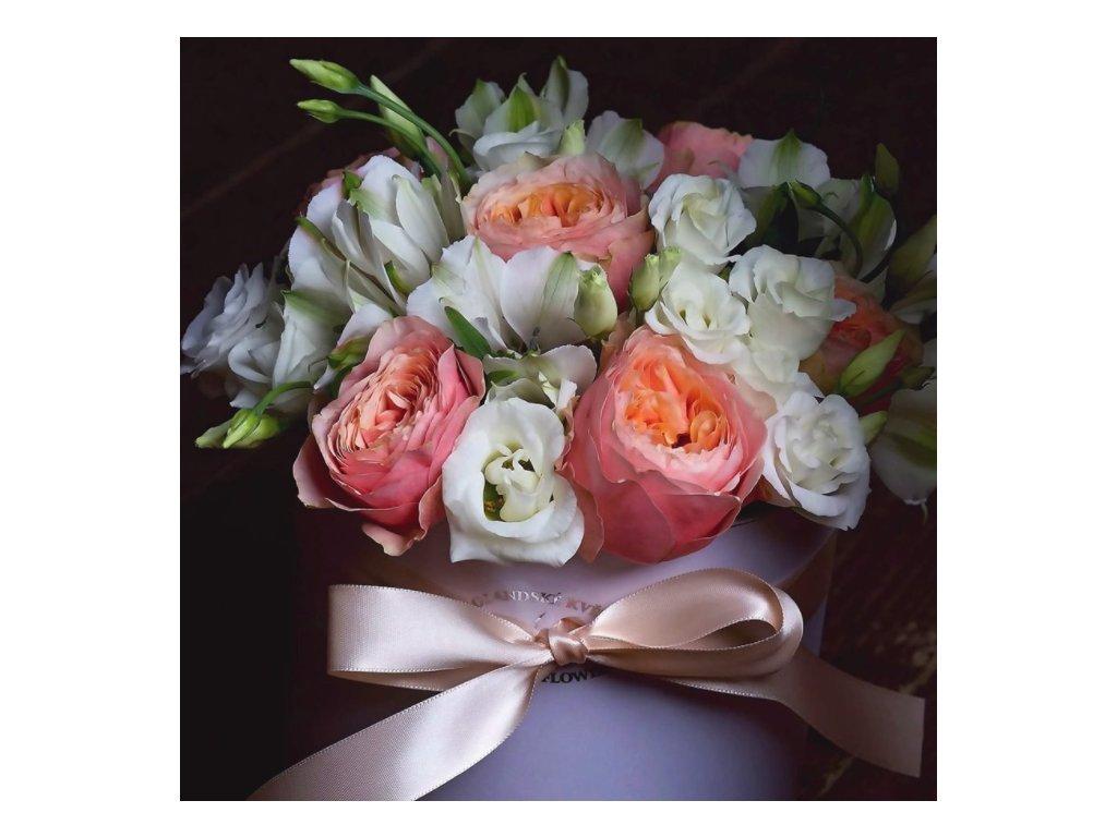 Flower box Vuvuzela - Holandské květiny