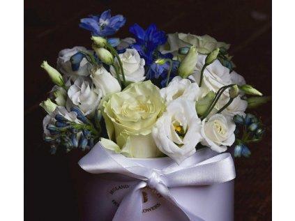 Flower box Blue - Holandské květiny