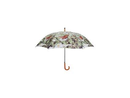 Deštník/motýli