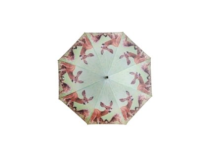 Deštník/Afrika - srna
