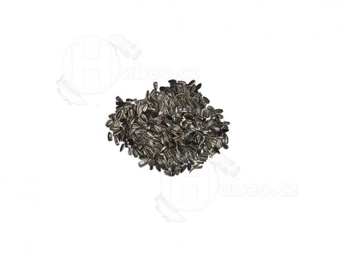 15539 1 slunecnice zihana 5 kg habeo cz
