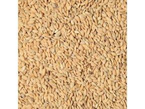 Paddy rýže 25kg