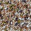 Závodní směs pro holuby - Dieta proteinová 20kg