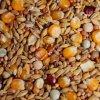 Krmivo pro holuby - Zimní směs 25kg