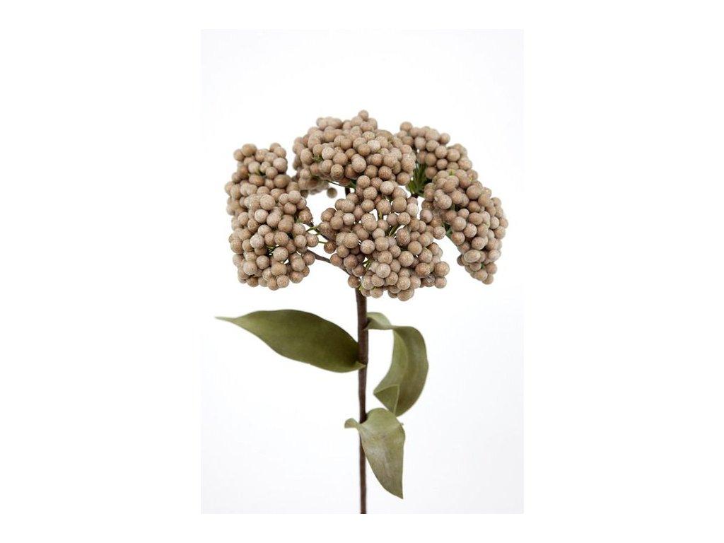 Květina bobule 178 Hnědá